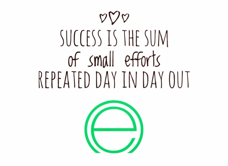 Success is the Sum of Small Efforts Repeated Day In Day Out